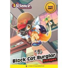 BLACK CAT BURGLAR   Level 1