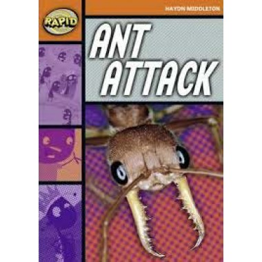 RAPID STAGE 4 SET B: ANT ATTACK
