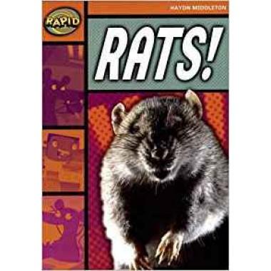 RAPID STAGE 4 SET B: RATS!