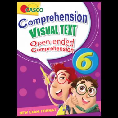 P6 Comprehension Visual Text
