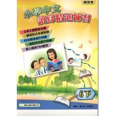 小學中文讀寫精進練習 6下